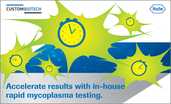 In-house Mycoplasma Testing