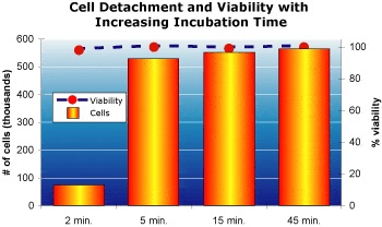rapidmicrobiology Rapid Cell Detachment from Tissue Culture