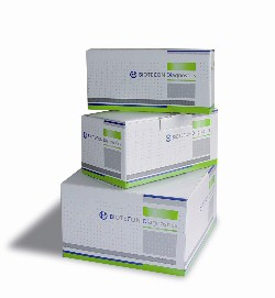 Biotecon food pathogen PCR kits