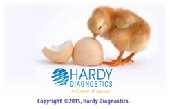 Microbiology testing in poultry industry