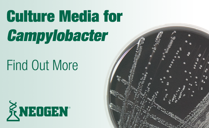culture media for campylobacter