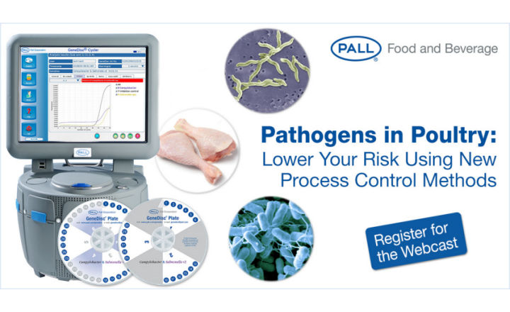 Detect Campylobacter and Salmonella in Poultry