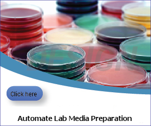 Automated media preparation