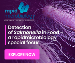 Salmonella Detection in Food