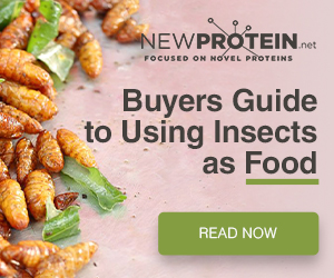 Find suppliers of novel protein ingredients for food manufacture