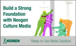 Build a strong foundation with Neogen culture media