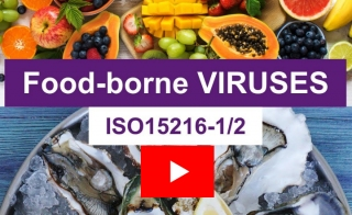 Foodborne Viruses - A Complete Solution from Sample to RNA Quantification