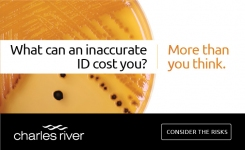 What can an inaccurate ID cost you