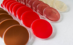 Automate preparation of selective media - blood, charcoal, chocolate agar