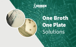 NEOGEN rsquo s One Broth One Plate Solutions for em Listeria em and em Salmonella em