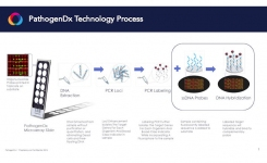 PathogenDx Workflow