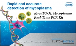Rapid Accurate Mycoplasma Detection