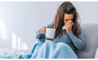 Seasonal Flu and Coronavirus Identification