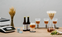 Sartorius solutions for brewing quality control